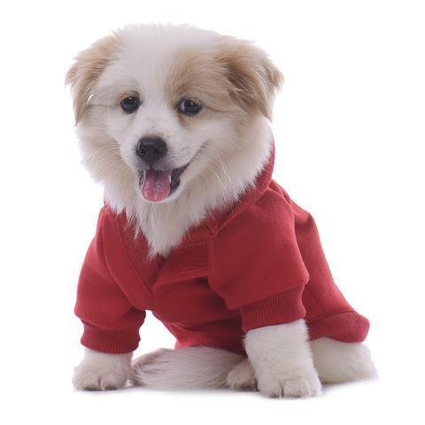 It's getting cooler outside… Have the Best Dressed Pooch